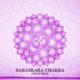 Settimo chakra Sahasrara